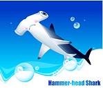 hammerheaded shark, sea, seabed, seafloor, ocean, background