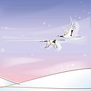 hill, season, snowing, snow, winter, crane, background