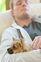 Man with Chihuahua sleeping on couch, Selective Focus