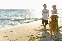 Boy and girl walking on beach with Golden Retriever