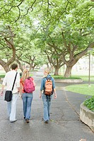College Students Walking on Path on Campus