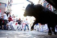 Running of the bulls Encierro, San Fermin festival, Pamplona, Navarra, Spain, Europe