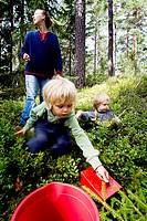 Close_up of mother with children playing in garden Barn är i skogen och plockar blåbär.