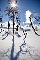 Person skiing on snowcapped landscape
