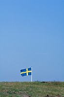 Svenska Flaggan, Swedish Flag In Field