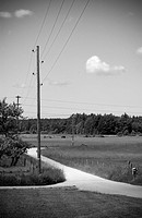 Electricity Poles And Power Lines In Rural Area B/W