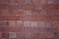 Brick Wall (thumbnail)