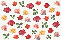A Rose Sheet