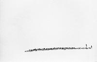 Renskötare På Skidor Driver Renhjord I Snö På Fjäll , A Herd Of Wild Reindeers In A Snowy Landscape