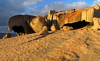 Remarkable Rocks in Flinders Chase Nationalpark on Kangaroo Island South Australia Australia