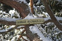 Sign to the Giesinger Waldhaus in the snow covered forest Perlacher Forst Munich Germany