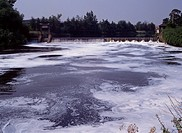 POLLUTION BY DETERGENT River surface covered with foam in July 1990 River Mersey, Warrington, Cheshire, north western England