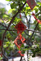 Buntings of wish hanging on the tree branch, Beihai Park, Beijing, China
