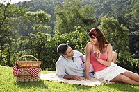 Young couple at picnic