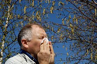 Man standing under a beech with allergic coryza or hey fever and is blowing his nose