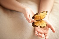 Butterfly on Woman´S Hand