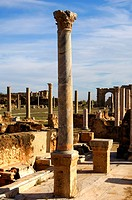 Ancient column with Corinthian capital, Leptis Magna, Libya