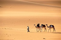 Tuareg walks with camels through the desert Mandara Libya