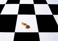 Chess board checkerboard, cequerboard with two grains of wheat  Story legend of the Indian king Shihram and the wise man Sissa bin Dahir