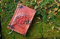 Diary with red leather cover, lock and ornamentation in a garden