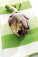 Artichoke with leaves (Cynara scolymus)