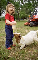Agriculture _ A little ranch girl feeds a young goat from a bottle in the yard of her familyÕs home / TX _ Tennessee Colony.