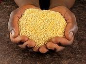 Hands holding couscous