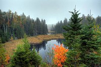 Morning fog in Algonquin Park in fall, Ontario, Canada