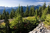 View from top of Dog Mountain at Mount Seymour Provincial Park in North Vancouver, British Columbia, Canada