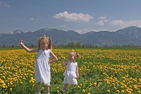 Girls in a meadow with dandelions