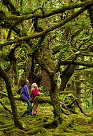 Two children in mossy forest, Naikoon Provincial Park, Queen Charlotte Islands, British Columbia, Canada