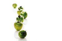 Green vine tomatoes