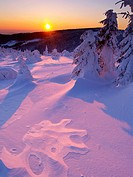 Winter evening on Cervena hora, Jeseniky Mountains, protected landscape area, North Moravia, Czech Republic, Europe