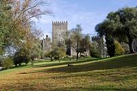 Historic castle Castelo de Guimaraes, Guimaraes, Portugal, Europe