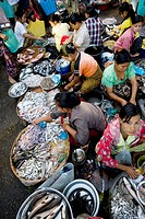 Fish Market in Yangon