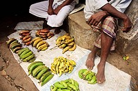 Men selling bananas at the market  Kollam, Kerala, India