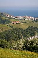 ´Txakoli´ vineyards, Guetaria (Getaria), Guipuzcoa (Gipuzkoa), Basque Country, Spain