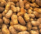 Idaho potatoes at a fruit stand