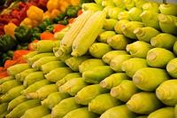 Rows of fresh corn