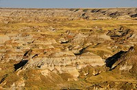 10856670, Canada, Badlands, at Dinosaur Provincial