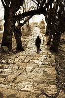 The path to the sacred temple in Muktinath, Nepal