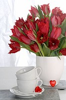 Red tulips and white porcelaine