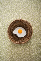 Fried nest egg