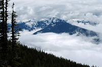 Scenic view of the Olympic Range of Mountains, Olympic National Park, Washington.