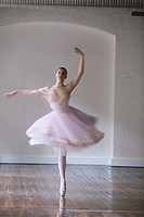 Ballet dancer dancing on floor