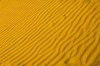 Close_up of rippled pattern, Jaisalmer, Rajasthan, India