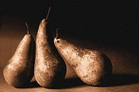 Three Pears arranged in a still ife composition in a sepia finish