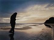 Theme: Henning Mankell, die falsche Faehrte, beach at Stenshuvudus Skane, Suedschweden