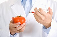 One man about to injecting tomato, mid section