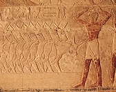Egyptian Civilisation. Relief of cattle rearer